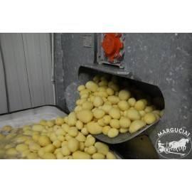 """Bulvių skutimo įrenginys """"Kruszec"""""""